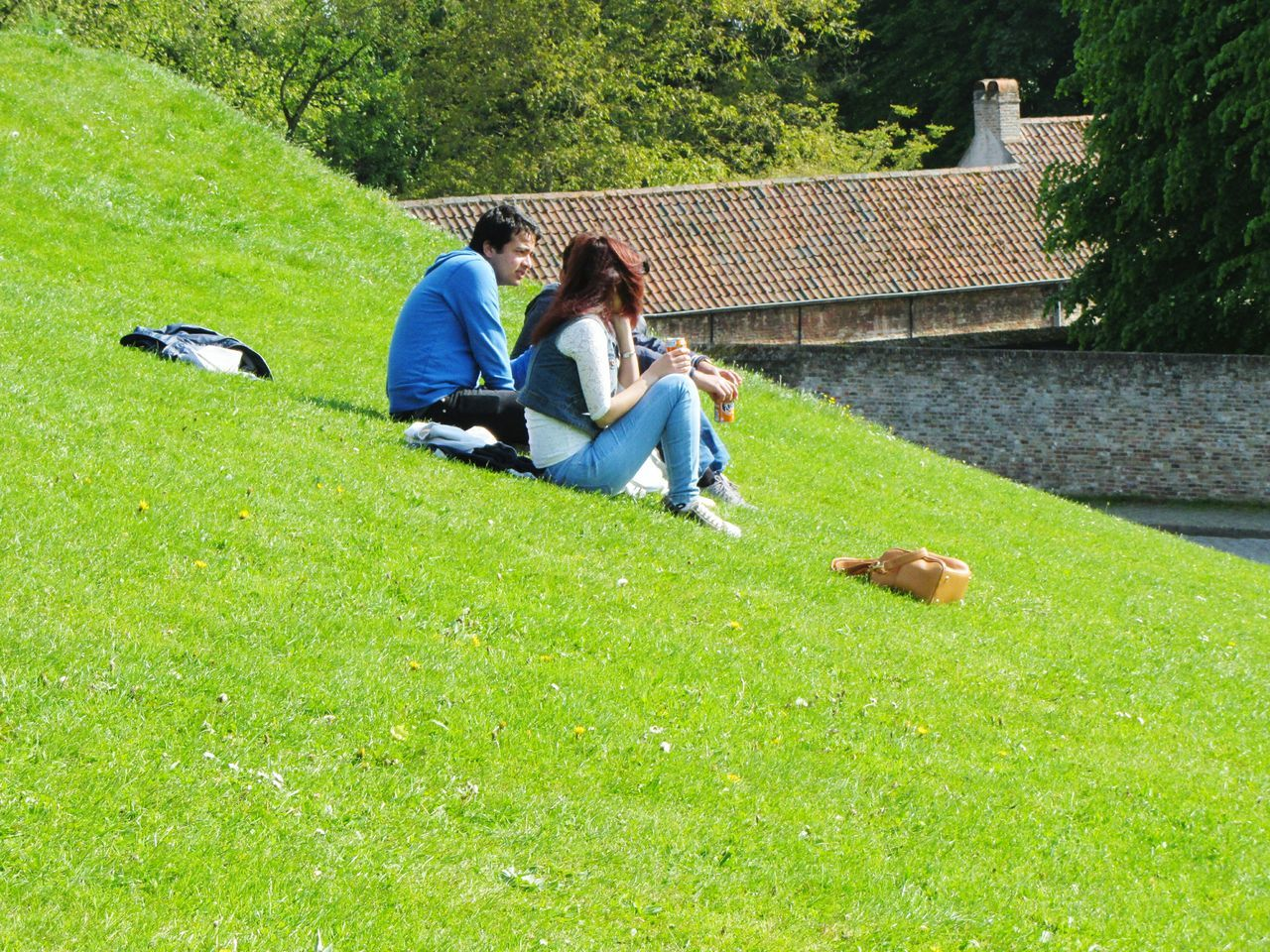 People Sitting Outside On A Grassy Slope Young People Together In The Sunshine Talking Green Grass Brick Wall Roof Bags Trees Daisies Flowers Chimney