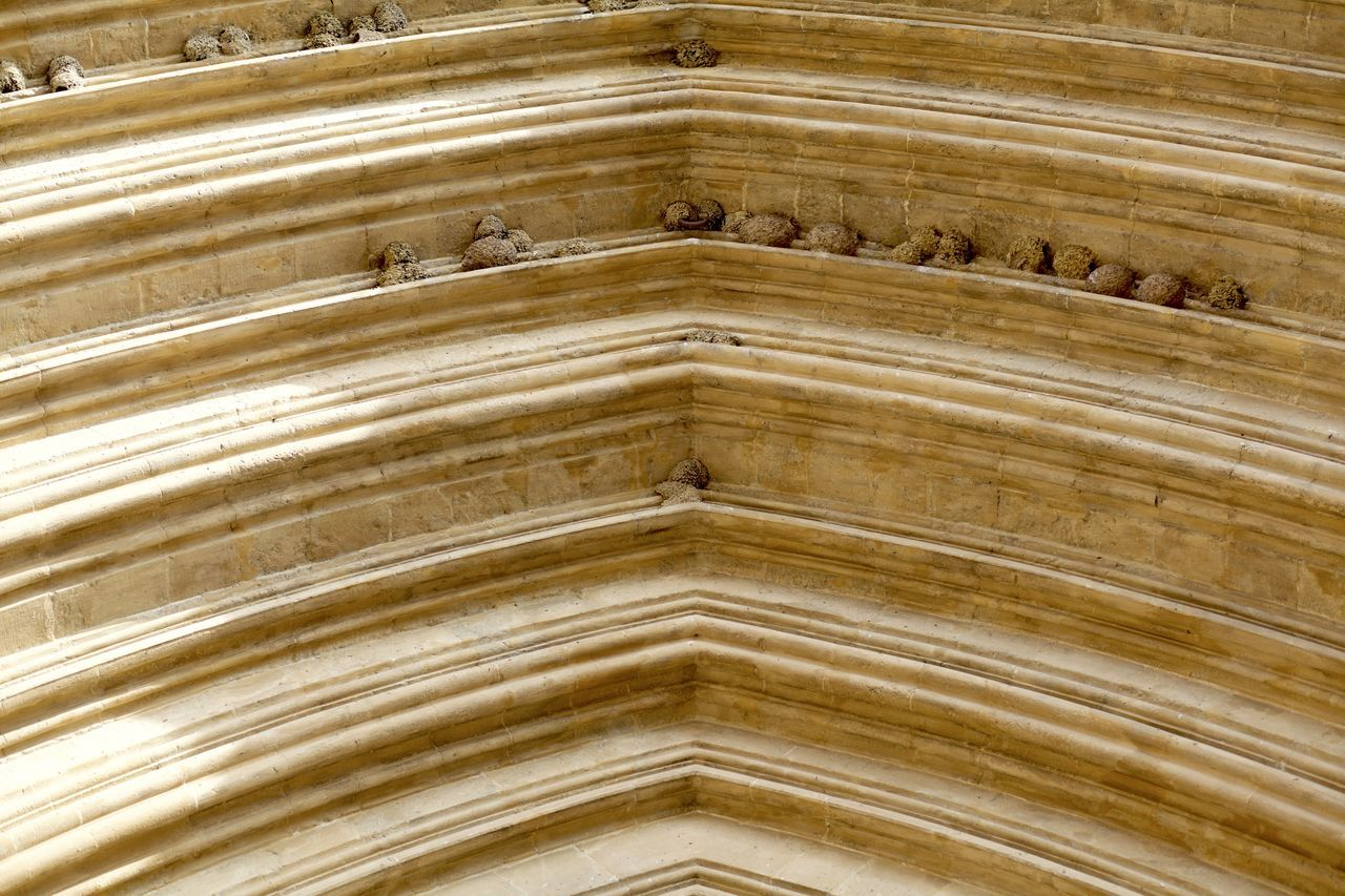 Arch Arches Architecture Backgrounds Bird Birds Church Close-up Day Full Frame Gold Colored Gothic Nest No People Outdoors Pattern Swallow