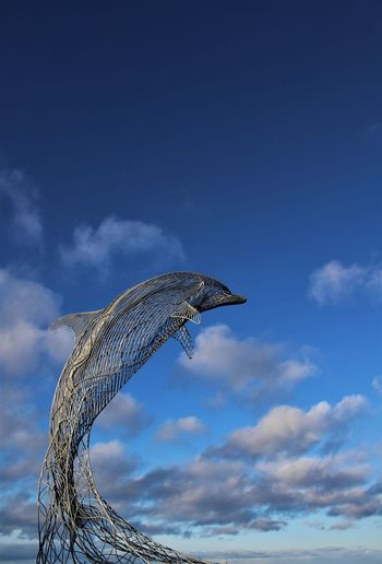 Animal Wildlife Animals In The Wild Bird Blue Close-up Cloud - Sky Day Dolphin Moray No People One Animal Outdoors Portsoy Scotland Sculpture Sky Spotted