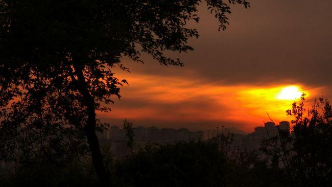 Trabzon Relaxing Nature Photography Samsungphotography Manzara Dediğin  Bostancı Zafanoz
