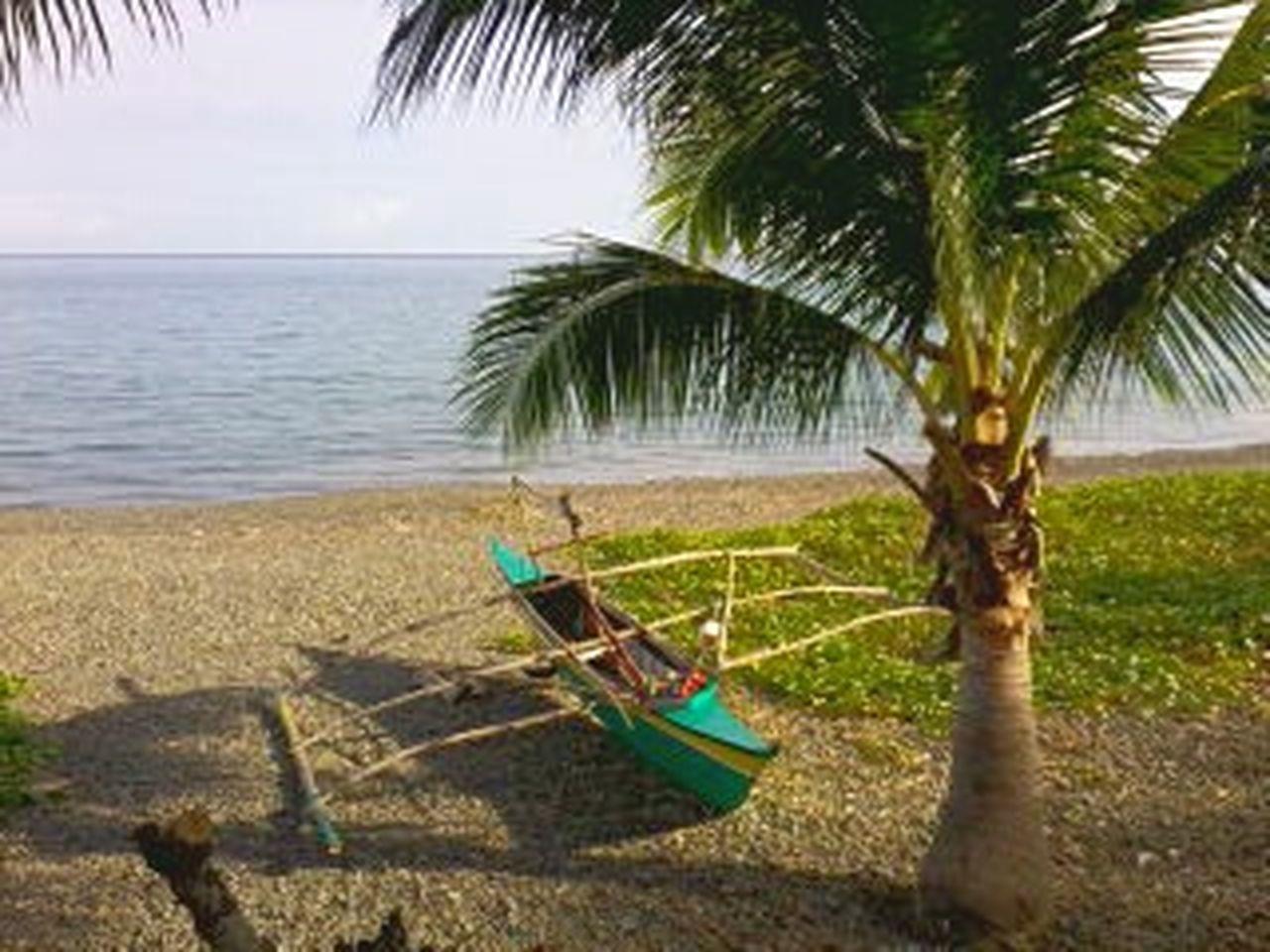 Summer breeze. Beach Beauty In Nature TravelPhilippines Bicol, Philippines Tranquility 5th Eyeem Photo Travelasia Pilipinas Bakasyon Palmtree