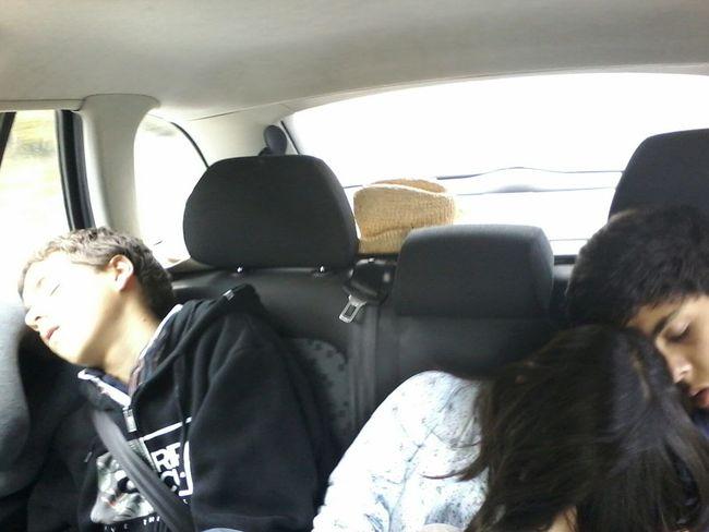 RePicture Travel Besttravelcompanions Sleeping