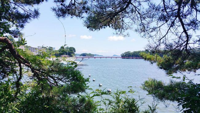 Sendai Hokuriku Japan Miyagi Trein Station Matsushima Trip Japan Travel Relaxing View Peace Feeling Good Nuturel Brig
