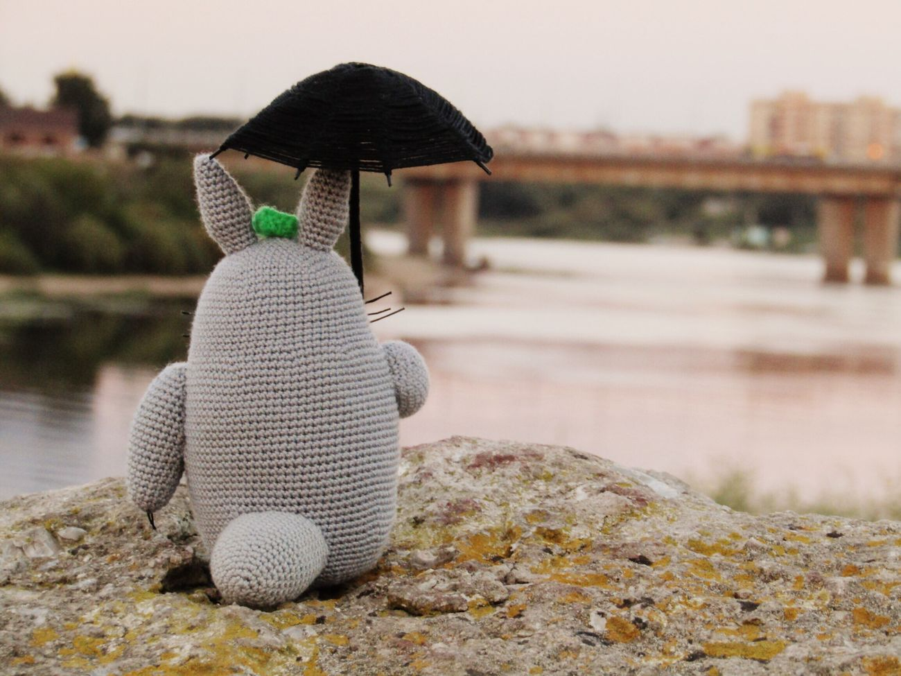 My friend Totoro loves travelling so much.... Water Outdoors Totoro Nature No People Focus On Foreground Day Magic Moments Beach Pskov EyeEmNewHere