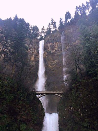 Multnomah MultnomahFalls Oregon Waterfall Nature Beauty In Nature Scenics