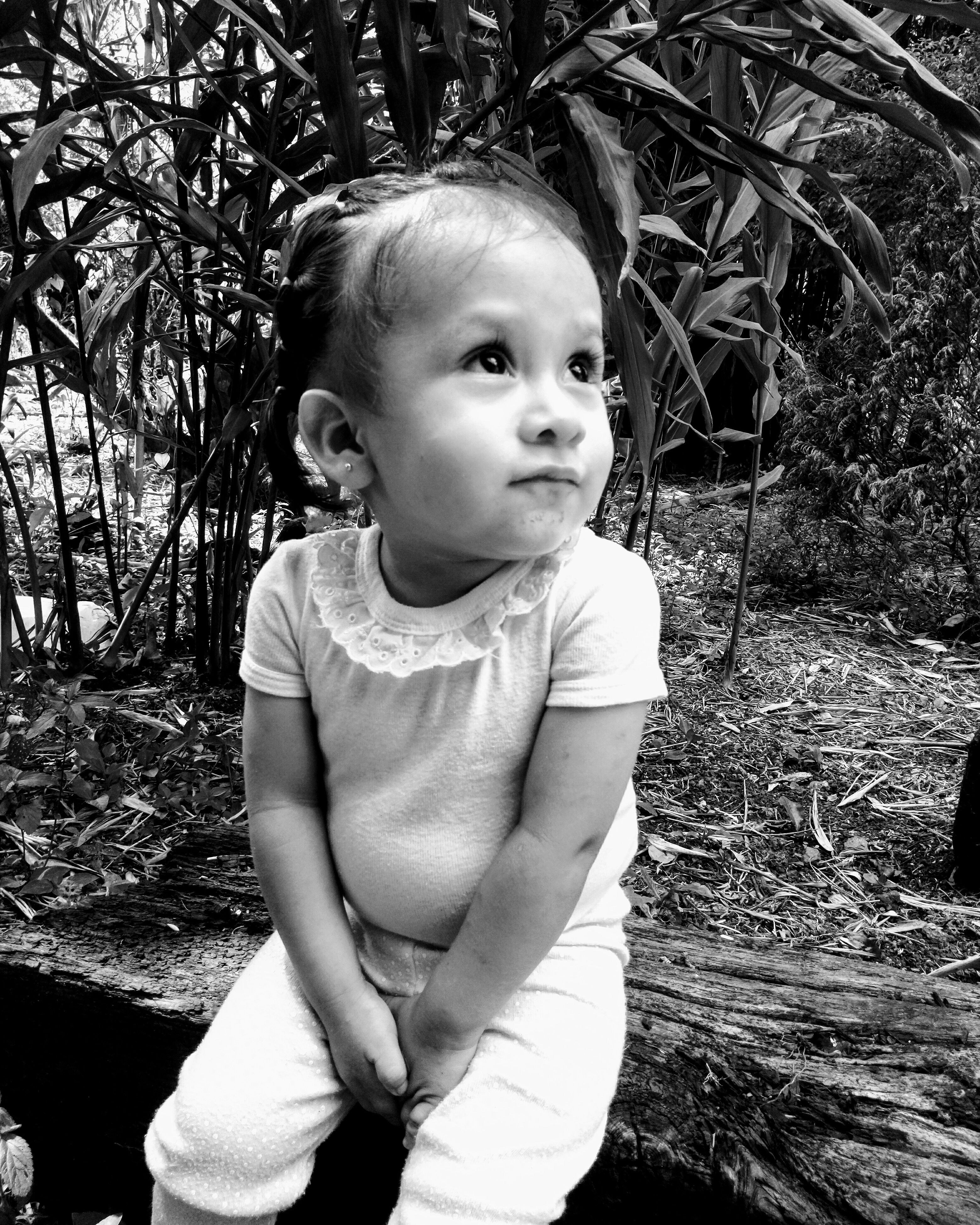 innocence, childhood, cute, baby, sitting, one person, day, outdoors