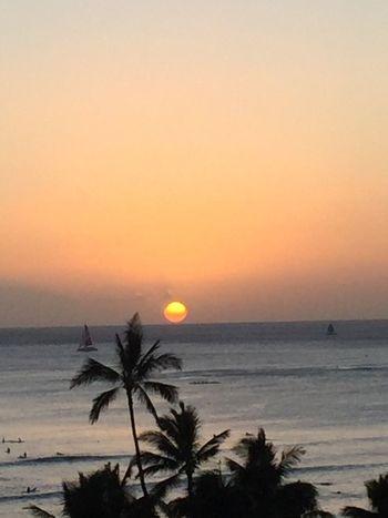 Sunset Orange Color Palm Tree Yellow Color Sun Ocean No People No Edit/no Filter Oahu Hawaii Oahu, Hawaii Island Of Oahu, Hawaii Oahu Pacific Ocean View Oahu Sunset Waikiki Beach Honolulu, Hawaii Hawaii Sunset Hawaii Honolulu  Oahu / Hawaii An Eye For Travel