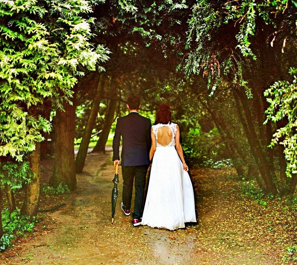 Wedding Bride Wedding Dress Celebration Bridegroom Love Wedding Ceremony Life Events Togetherness Tree Adult Adults Only Women People Men Couple - Relationship Well-dressed Day Wife Married Travel Destinations EyeEm Nature Lover