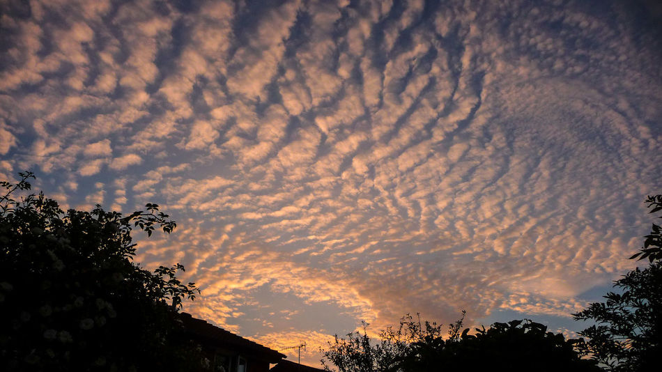 Beauty In Nature Bromsgrove Cloud - Sky Day England Low Angle View Nature No People Outdoors Scenics Silhouette Sky Sky Patterns Sunset TOWNSCAPE Tranquil Scene Tranquility Tree Worcestershire