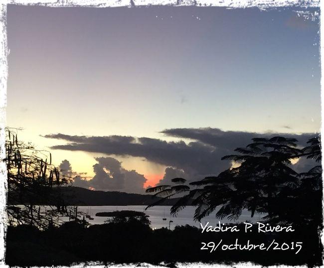 Pauletta's Sunrise Taking Photos Isla Culebra