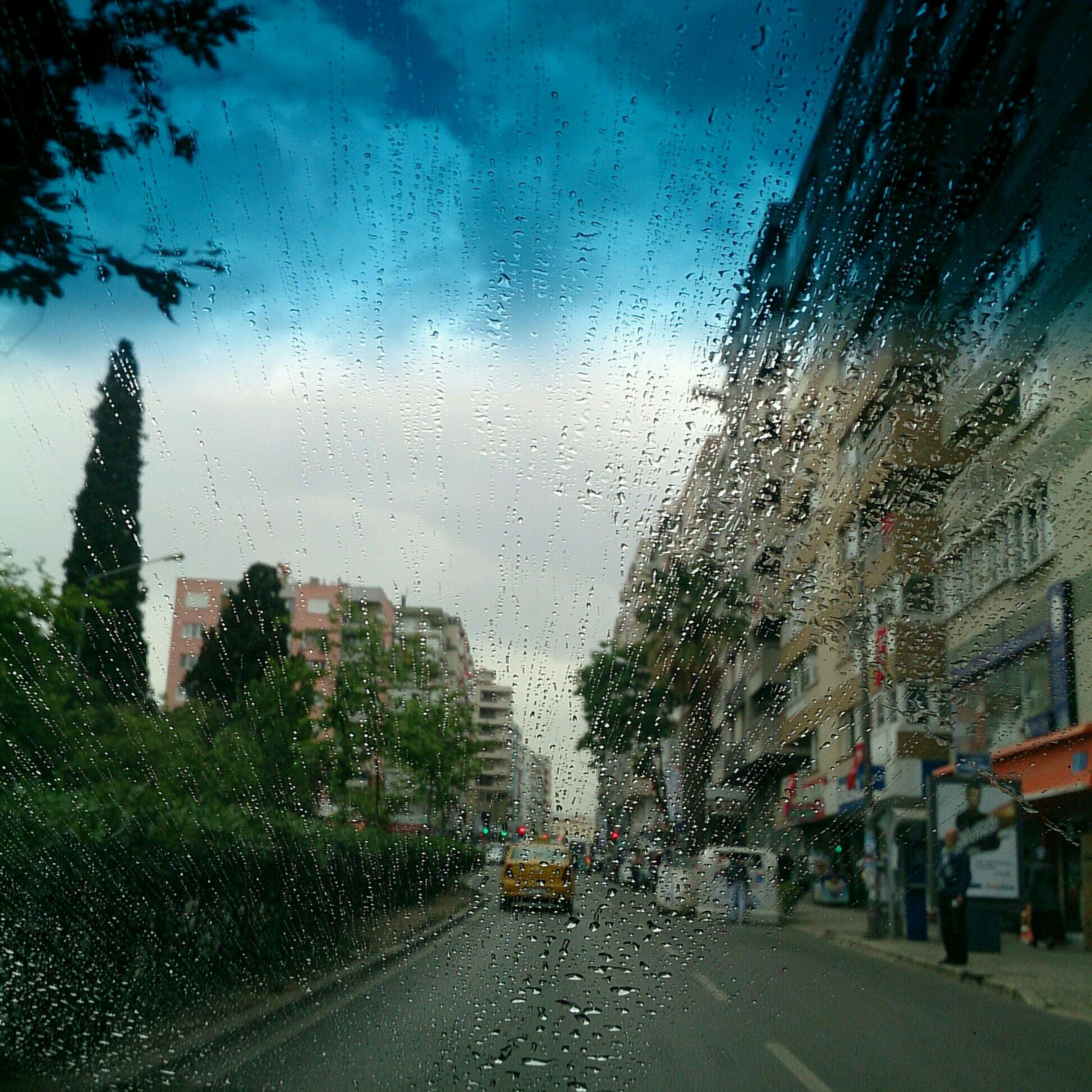 Yağmur Rain