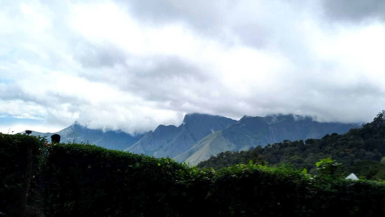 Mountain Cloud - Sky Nature Landscape Mountain Range Tea Crop Beauty In Nature munnarbeauty