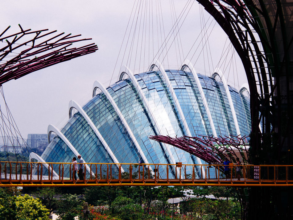 Gardens by the bay Architecture Built Structure Capital Cities  City City Life Famous Place Gardens By The Bay International Landmark Modern Singapore Sky Skytree Travel Destinations