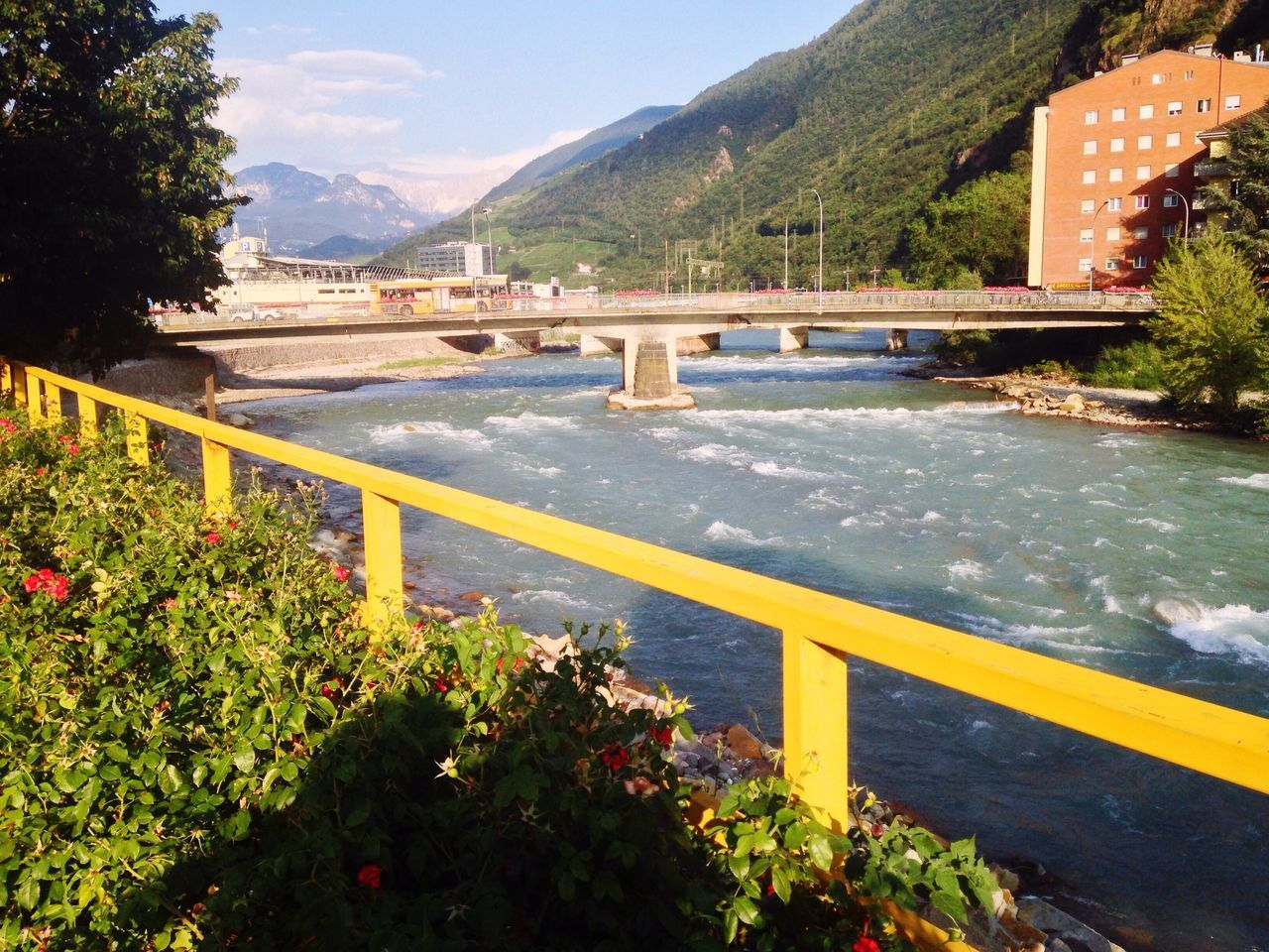 188/365 July 7 2017 One Year Project Bolzano - Bozen Bolzano South Tyrol Italy Mountain Mountain Range Water Day Nature Beauty In Nature Tree Outdoors No People Plant Scenics Sky Flower