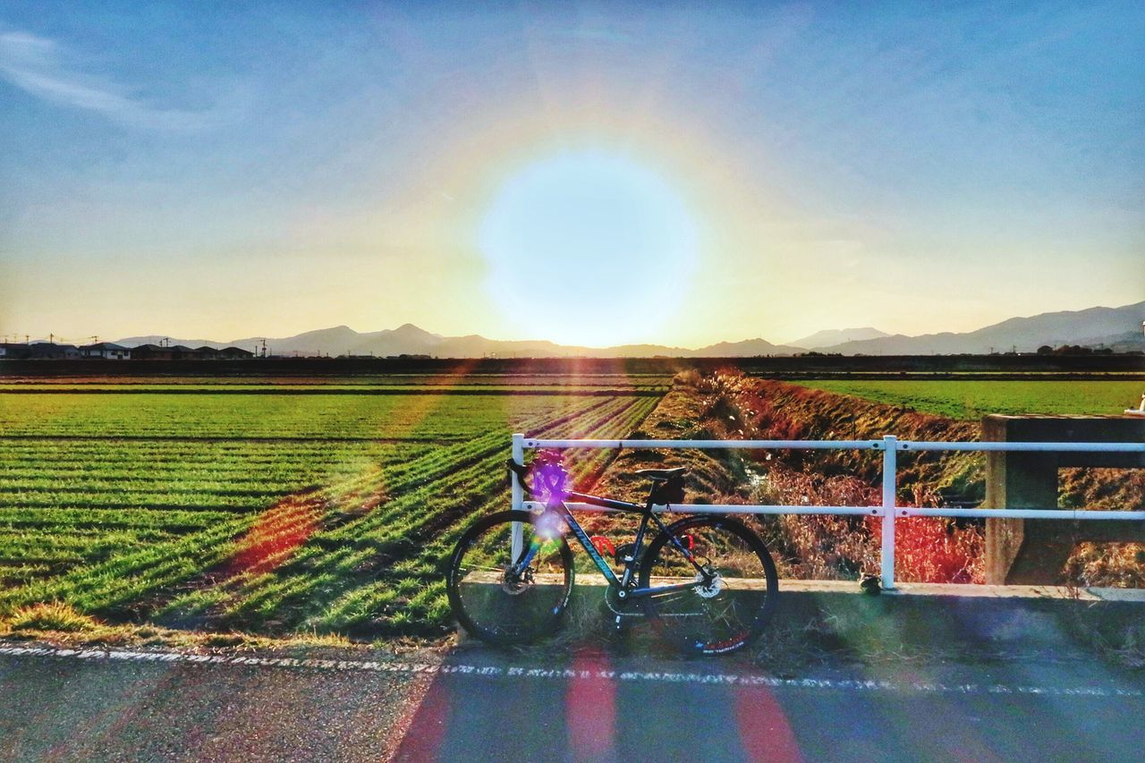 Cycling Cyclist Cycle Sport Outdoors Bicycle Road Roadbike Sky Sun Sunset Sunlight Sunbeam Cloud - Sky Beauty In Nature Nature Beauty In Nature 自転車 太陽 夕陽 空 光 サイクリング たんぼ 農道