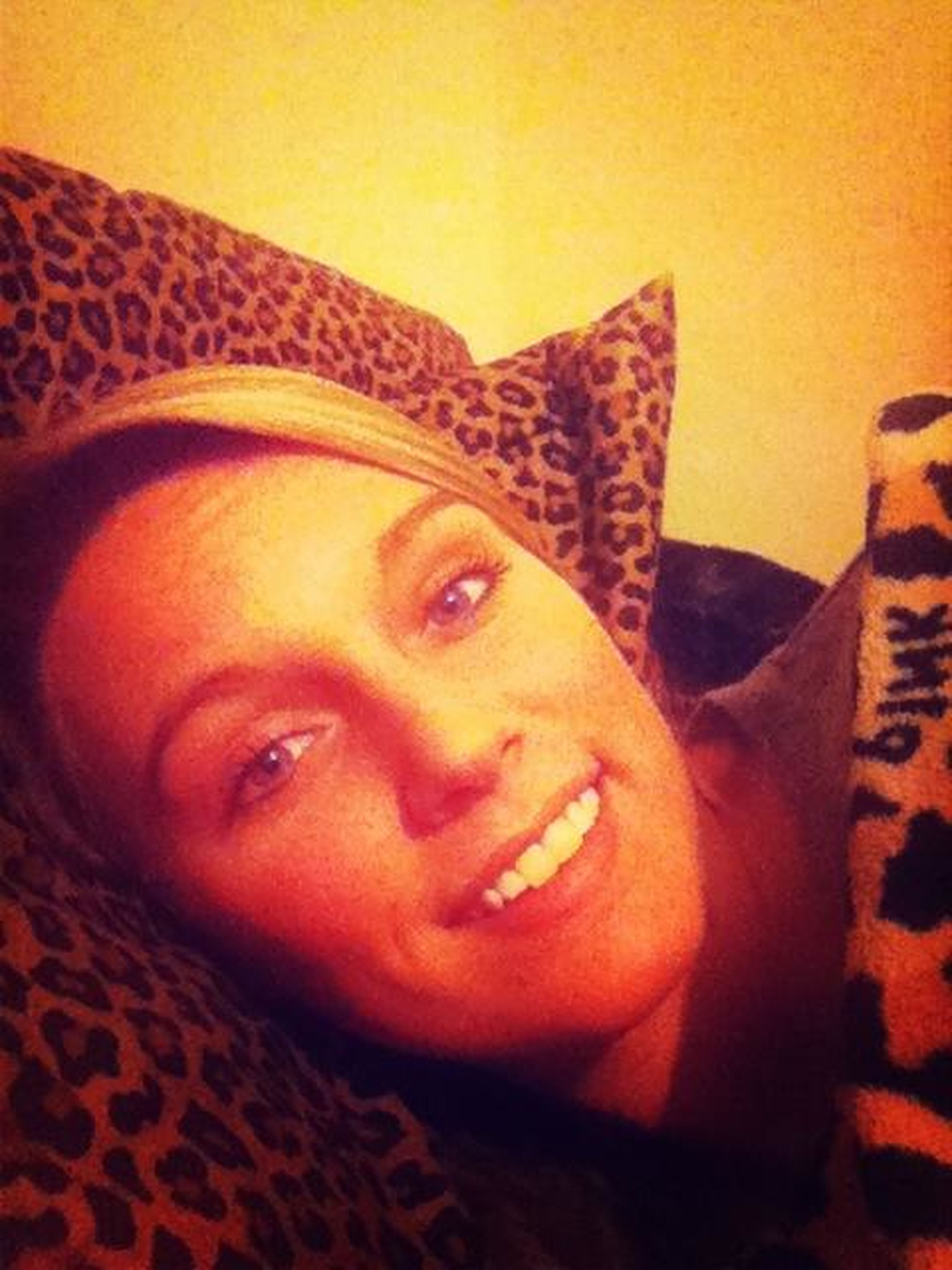 Cheetah Pillow & Cheetah Blanket