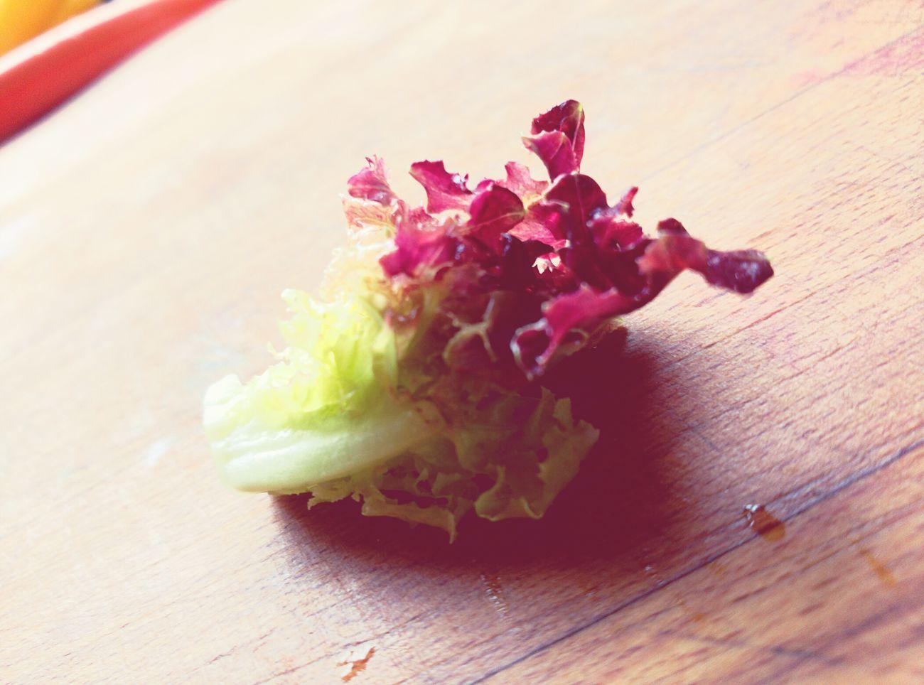 Salad Salad Ensalada Enciam Lechuga Verdun Sano! Delicious Bonissim