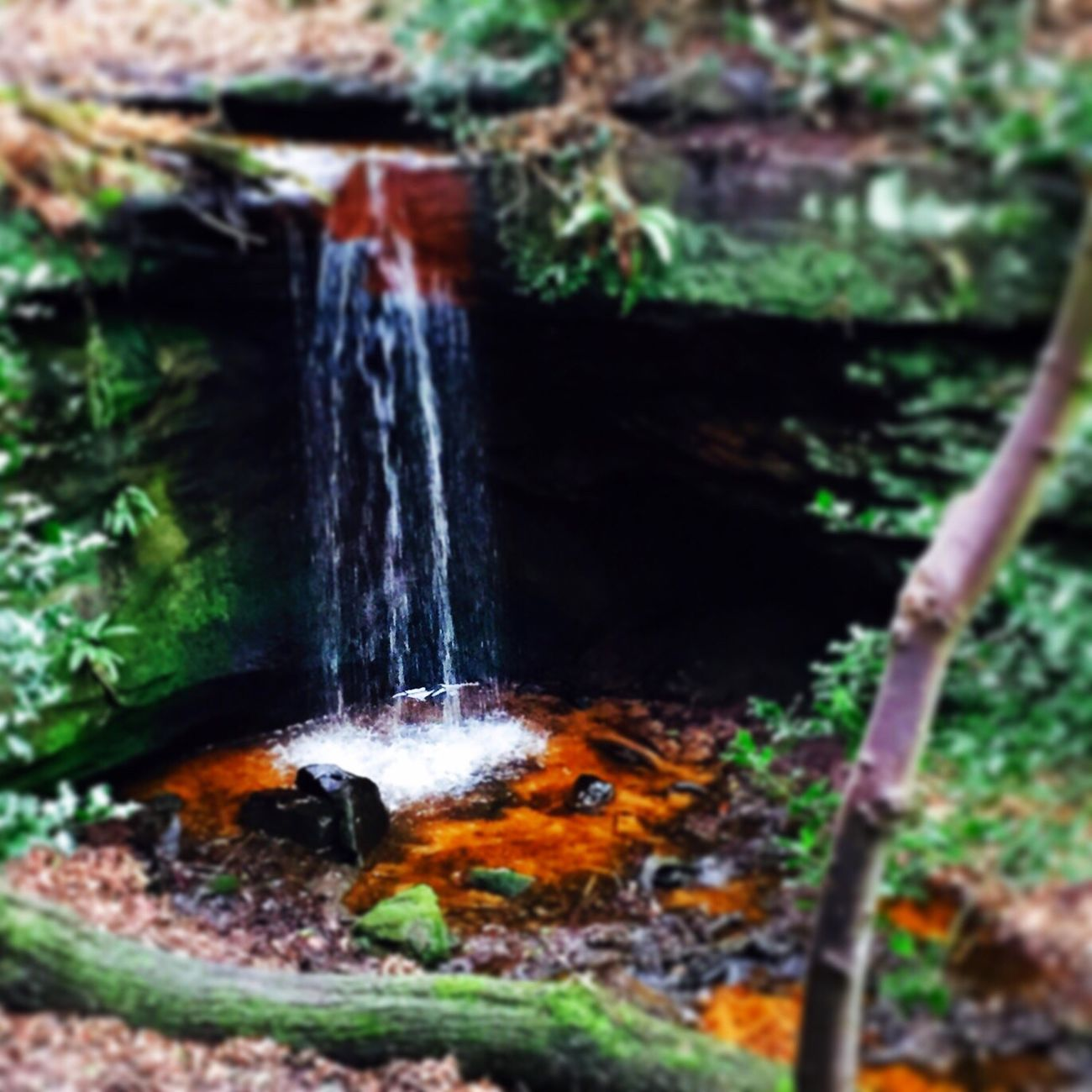 Waterfall under the Edge. Alderley Edge Waterfall Forest Nature Trees Cheshire