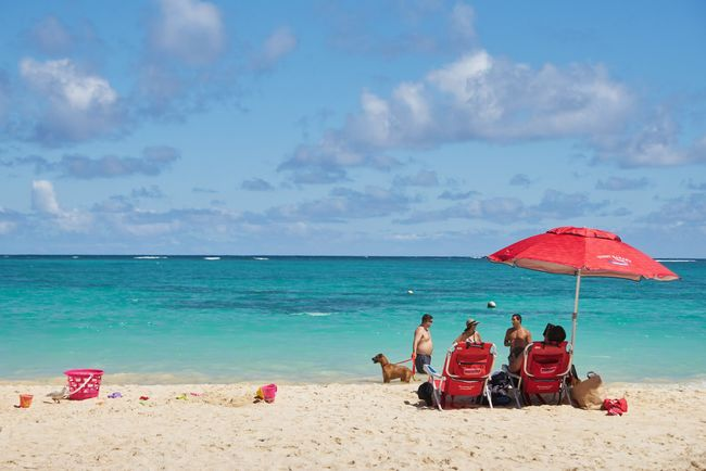 Beach Sea Sand Horizon Over Water Water Shore Sky Relaxation Vacations Beauty In Nature Nature Cloud - Sky Real People Outdoors Person Beach Umbrella Scenics Day Togetherness Adult Sea And Sky Hawaii Haleiwa  Beautiful Nature Beautiful