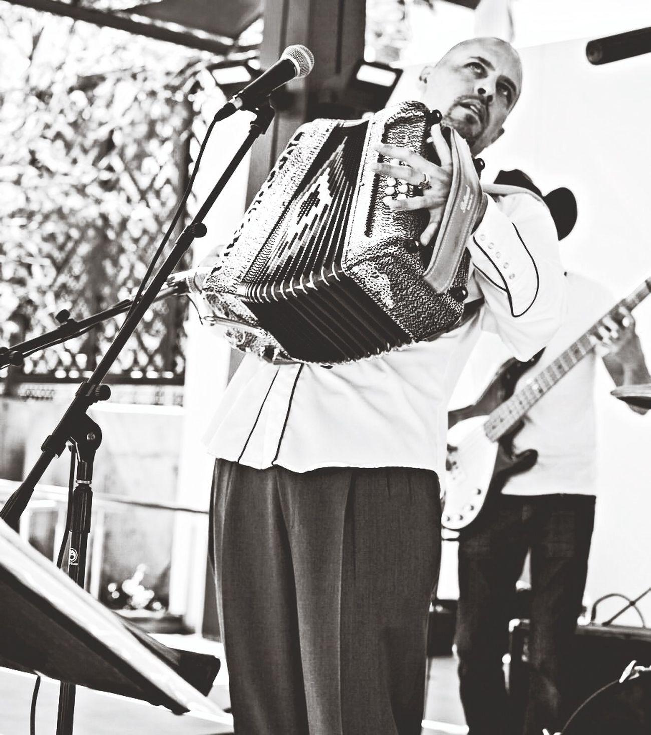 Los Pochos killing it at La Plaza Music Capa Filter