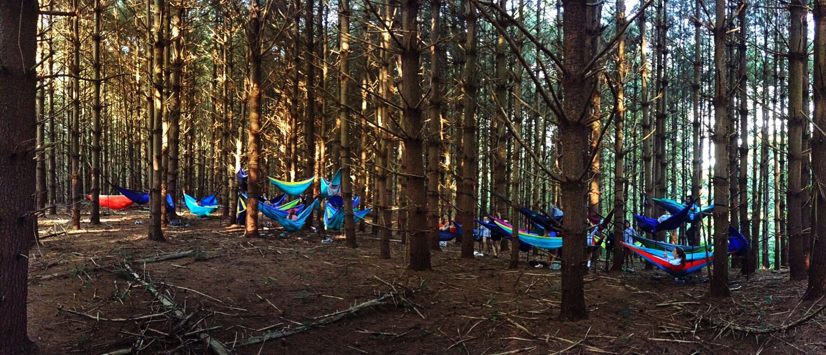 I took 50 first years to the woods and was considered a chaperon lol Eno Eno Village