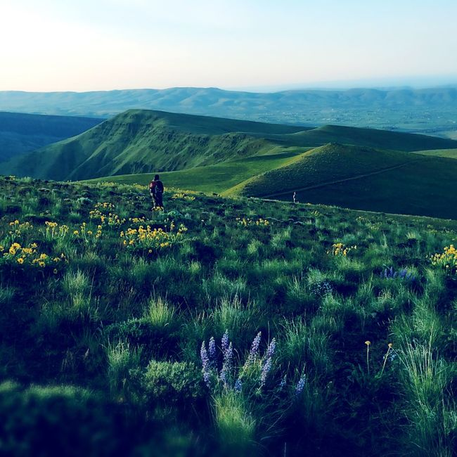 Skyline Trail, Yakima, WA IPS2016Landscape Hipstamatic