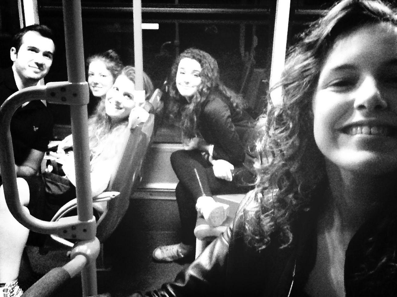 cuccioli in autobus