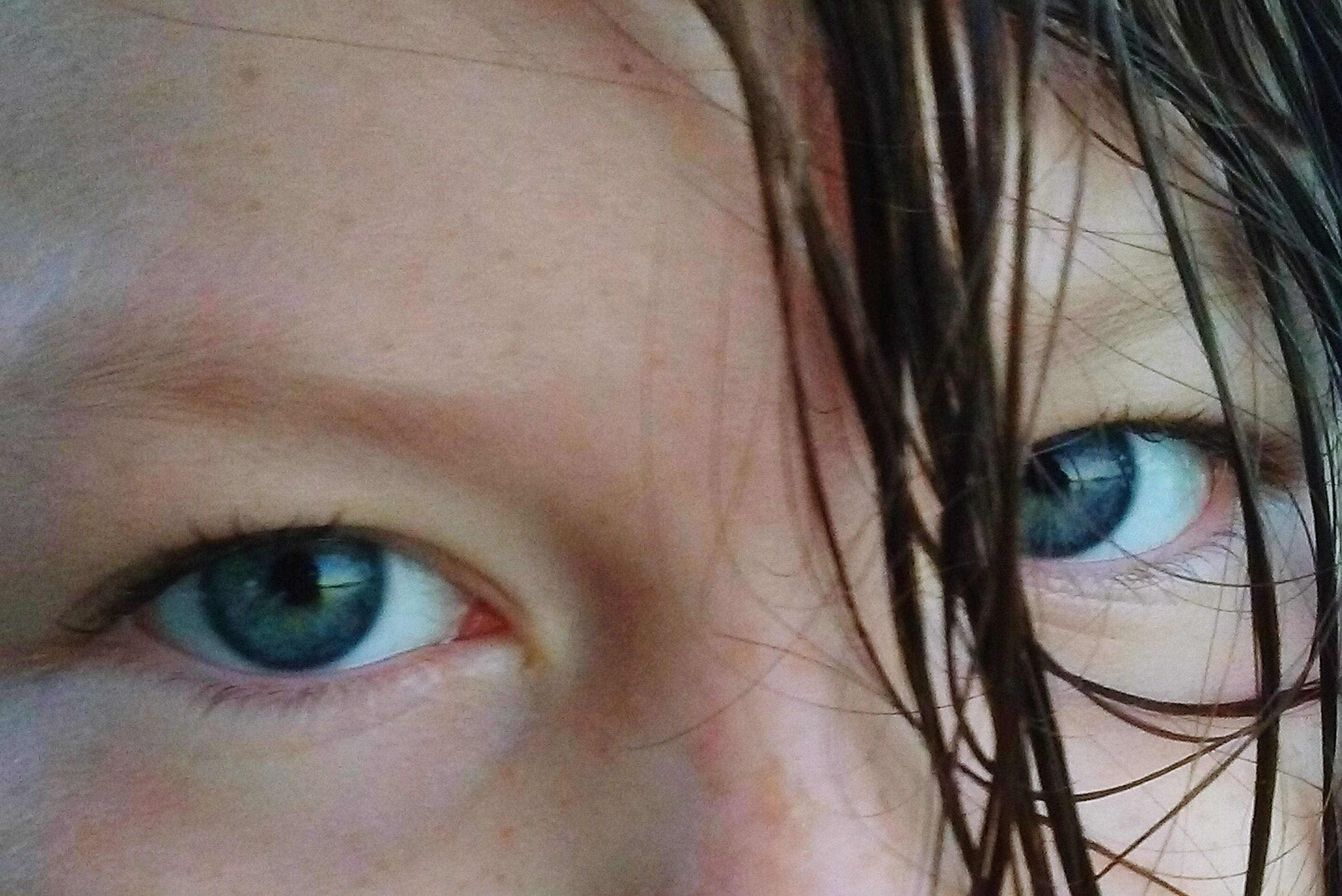looking at camera, human eye, portrait, close-up, part of, human face, headshot, green eyes, staring, eyelash, young adult, person, eyesight, focus on foreground, beauty, eyebrow, eyeball