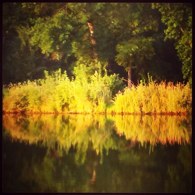 Schramm Park Water Reflections Reflection Beautiful Nature Naturelover