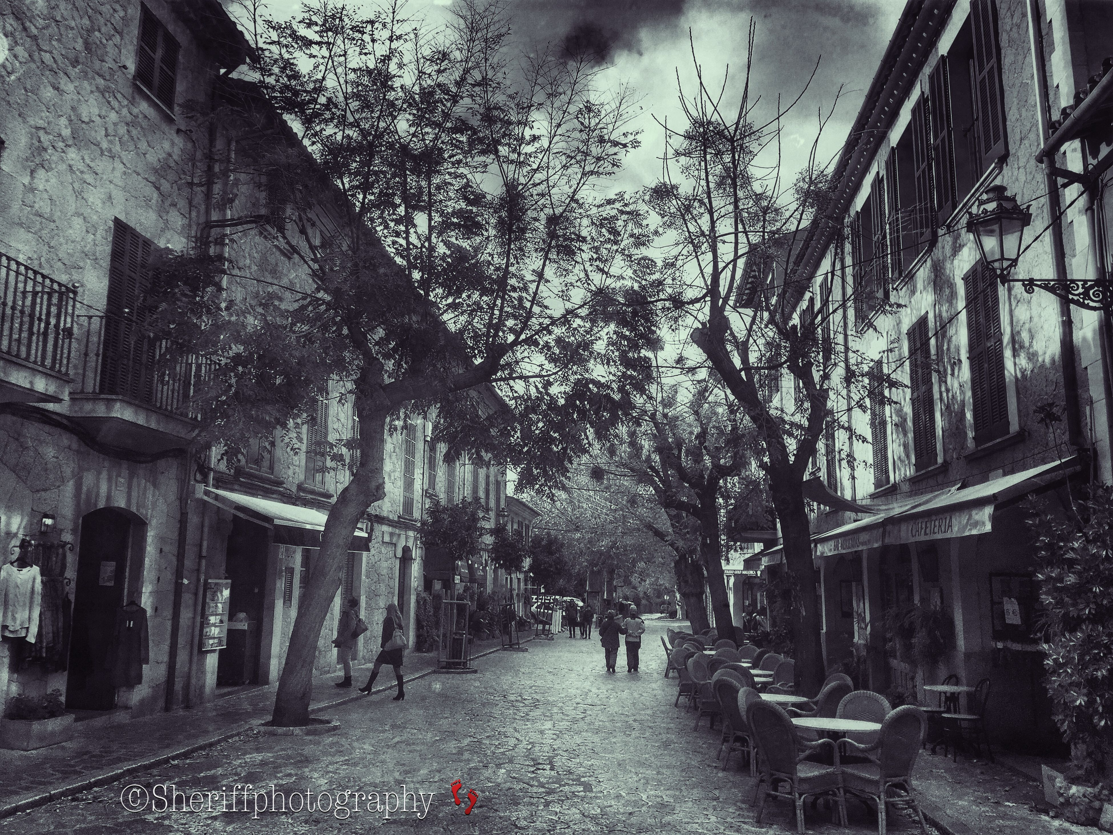 architecture, building exterior, built structure, the way forward, residential building, house, residential structure, building, alley, street, diminishing perspective, day, city, narrow, tree, outdoors, vanishing point, no people, incidental people, transportation