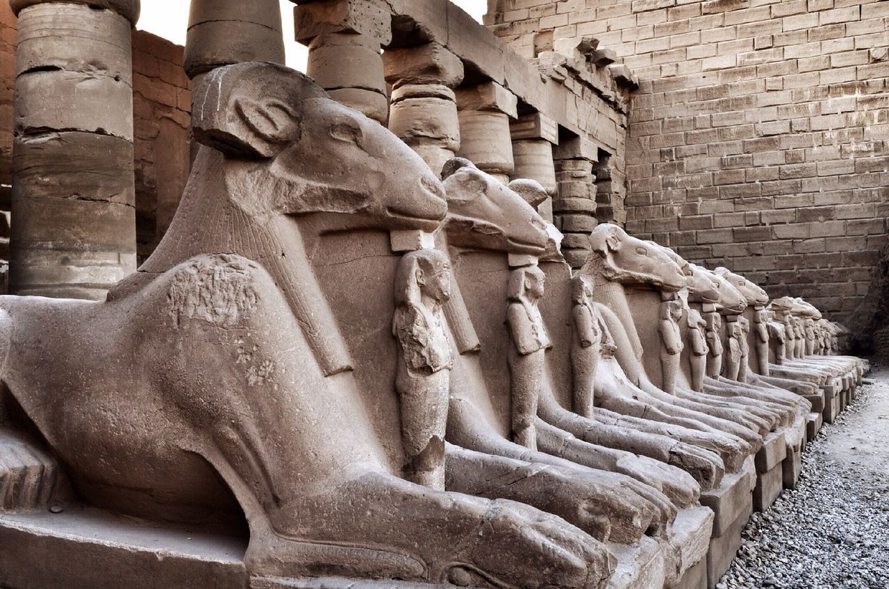 Beautiful stock photos of egypt, Ancient Civilization, Ancient Egyptian Culture, Animal Body Part, Animal Head