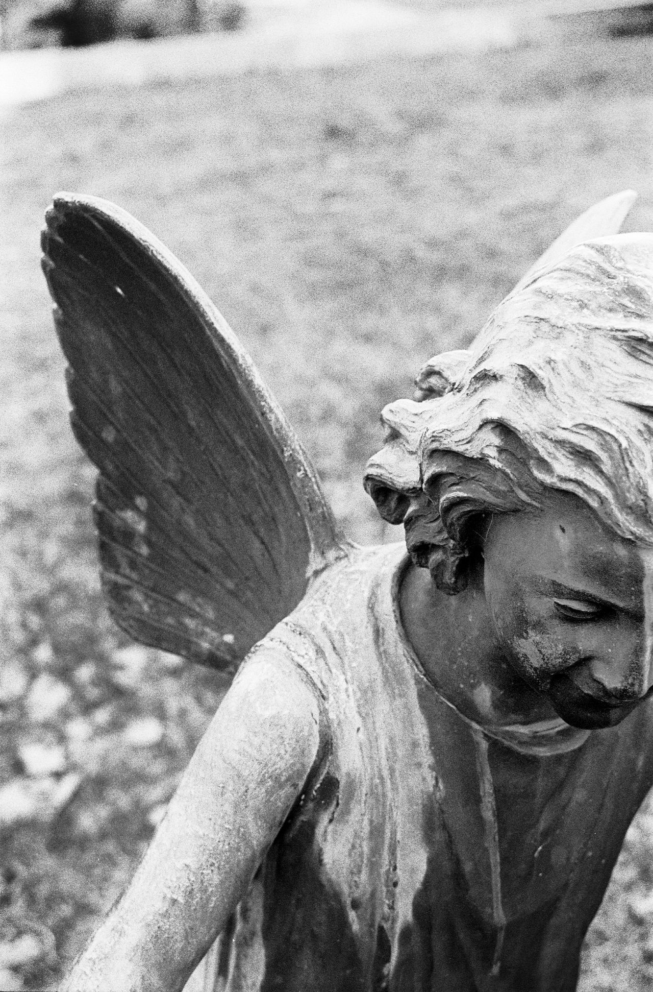 Angel Wings Angel Angel Statue Angelic Statue Film Photography Black And White Photography Black & White