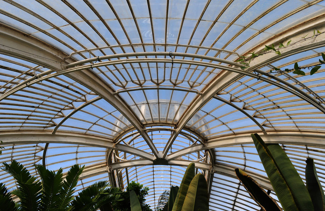 Arch Architectural Design Architectural Feature Architecture Built Structure Ceiling Day Geometric Shape Glass - Material Grid Indoors  Ironwork  Low Angle View Old Palm House, Kew Gardens Plant Repetition Sky Sunny Transparent Victorian Beautifully Organized Art Is Everywhere Break The Mold