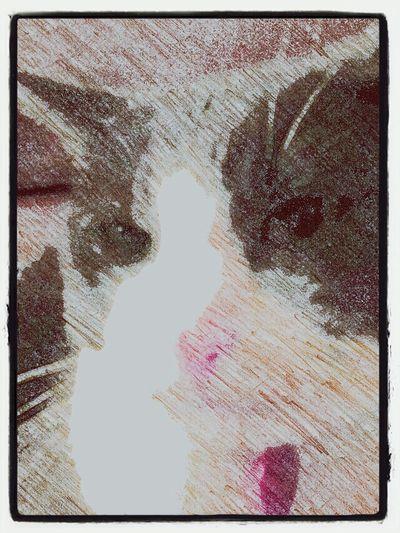kitty colored pencil Sketch Guru Animal Portrait Cats Pink