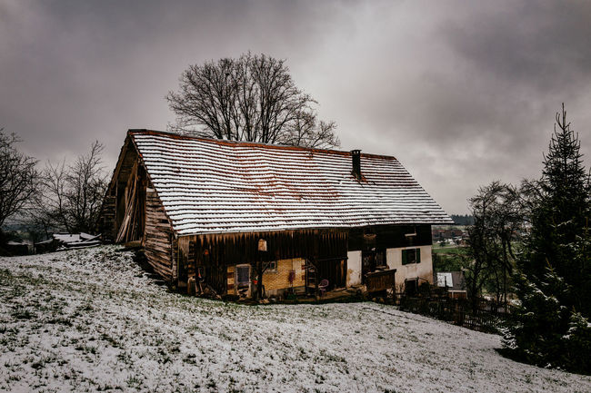 Abandoned Architecture Bare Tree Bauernhaus Building Exterior Built Structure Cold Cold Temperature Field Grass House Leading No People Old Outdoors Residential Structure Roof Winter Wood Wood - Material