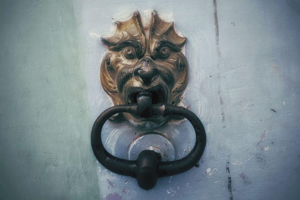 Beautiful Animals  Doors Please To Meet You Urbanexploration Demon