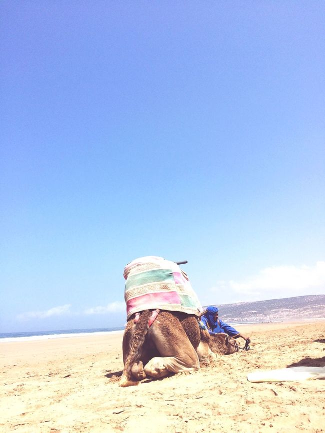 Morocco Blues Beachphotography surfmorocco