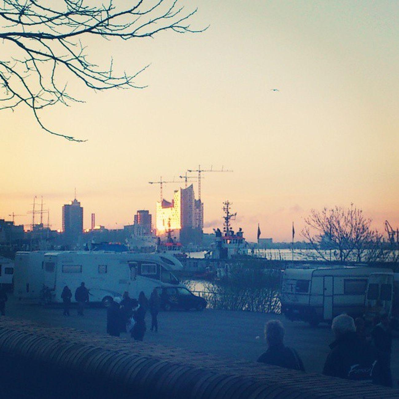 Noch ein nachträgliches Bild vom Fischmarkt Besuch Elbphilharmonie Hamburg