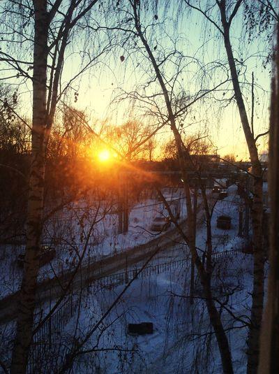 Вид из окна...( закат🌇 Закат вечер Evening Sunset Sun холодныйДень Cold Days Snow Winter