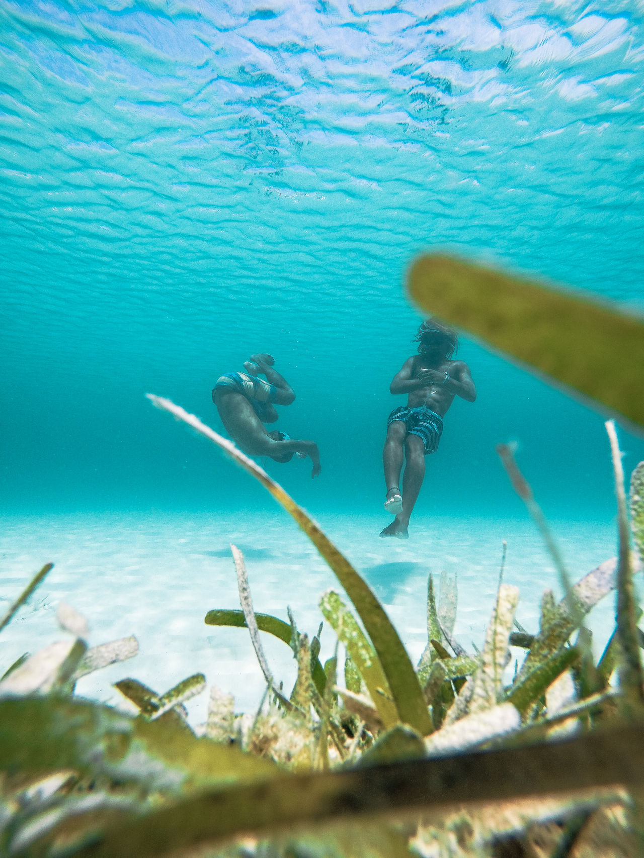 🏊We love being underwater🌊~ UnderSea underwater sea Nature water beauty in Nature sea life Swimming outdoors The Great Outdoors - 2017 EyeEm Awards travel destinations summer Live for the Story turksandcaicos beach paradise grandturk