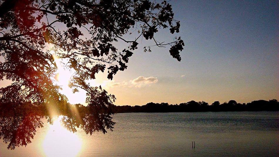 Showcase: December Sunset Sunset_collection Beautiful Sunset #sun #clouds #skylovers #sky #nature #beautifulinnature #naturalbeauty #photography #landscape Nature_collection Simplyscenic Simplyscenic_photography