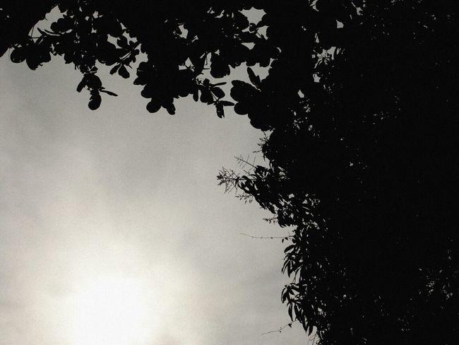 Black & White Relaxing I ♥ Retro...  Naturaly & Perfect
