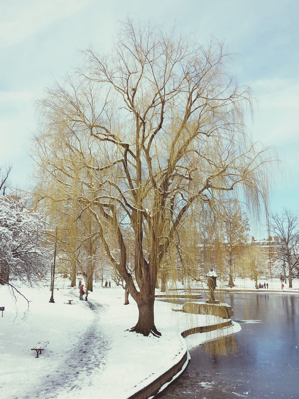 winter, snow, cold temperature, bare tree, tree, weather, nature, cold, outdoors, day, sky, beauty in nature, tranquil scene, tranquility, branch, frozen, scenics, architecture, no people