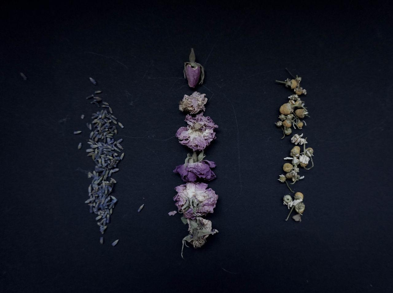 Chamomile Dark Herbal Herbs Lavender Plants Preparation  Roses