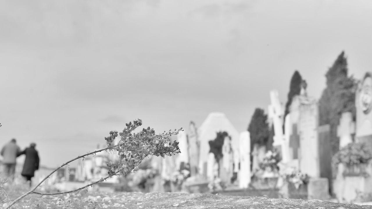 Llegaremos juntos? Cementery Old People Melancholic Landscape