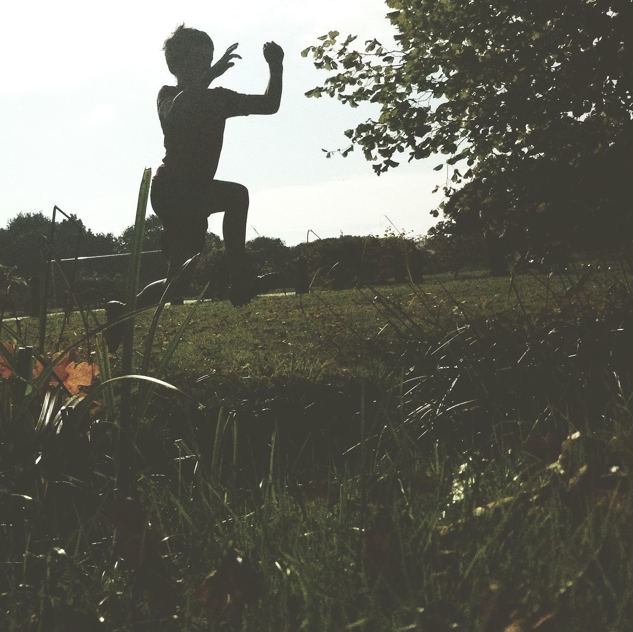 grass, field, silhouette, full length, tree, growth, outdoors, landscape, day, one person, nature, men, real people, sky, people