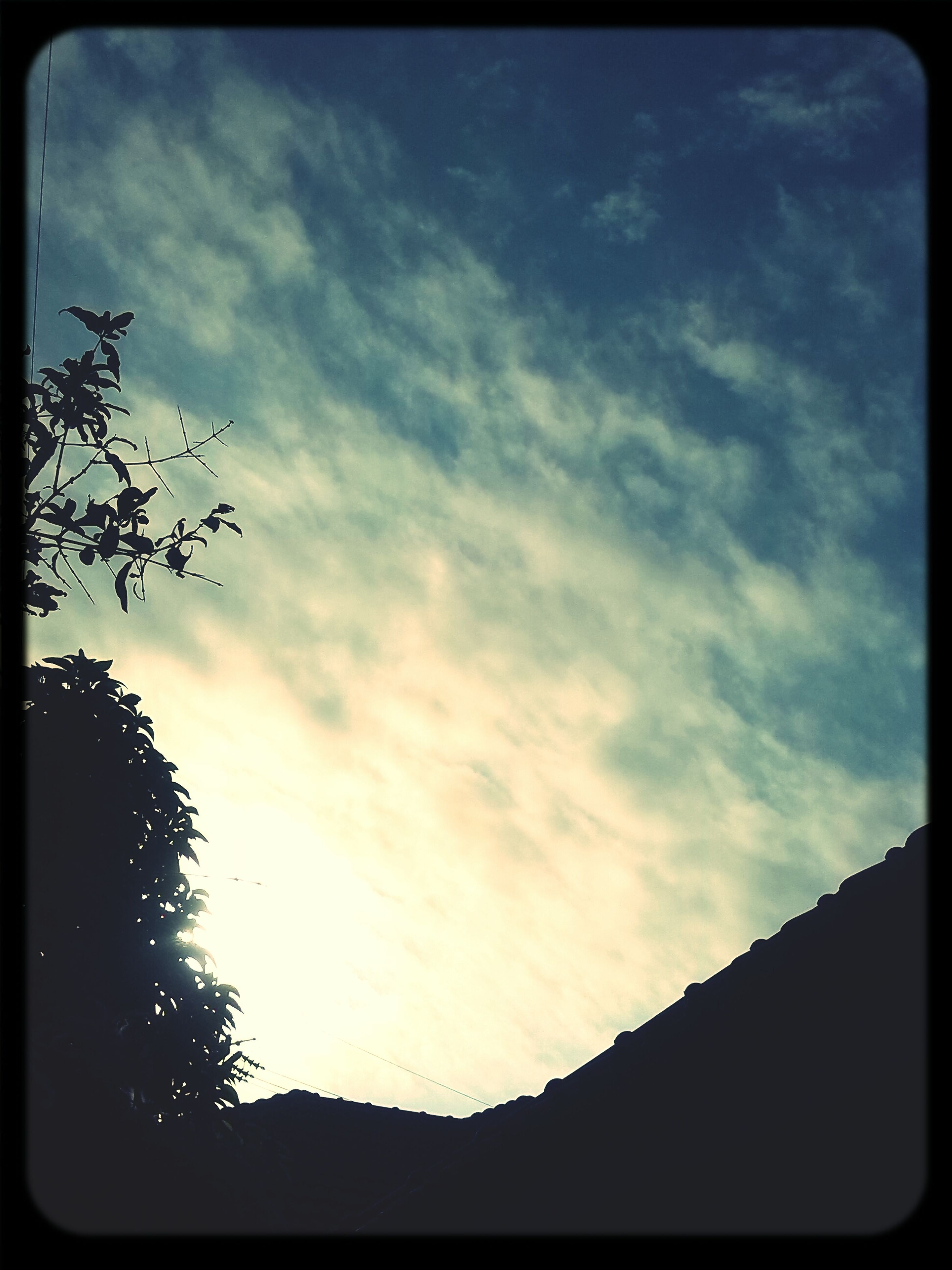sky, transfer print, silhouette, low angle view, cloud - sky, tree, auto post production filter, cloudy, cloud, tranquility, tranquil scene, beauty in nature, nature, scenics, outdoors, dusk, no people, sunset, bare tree, landscape