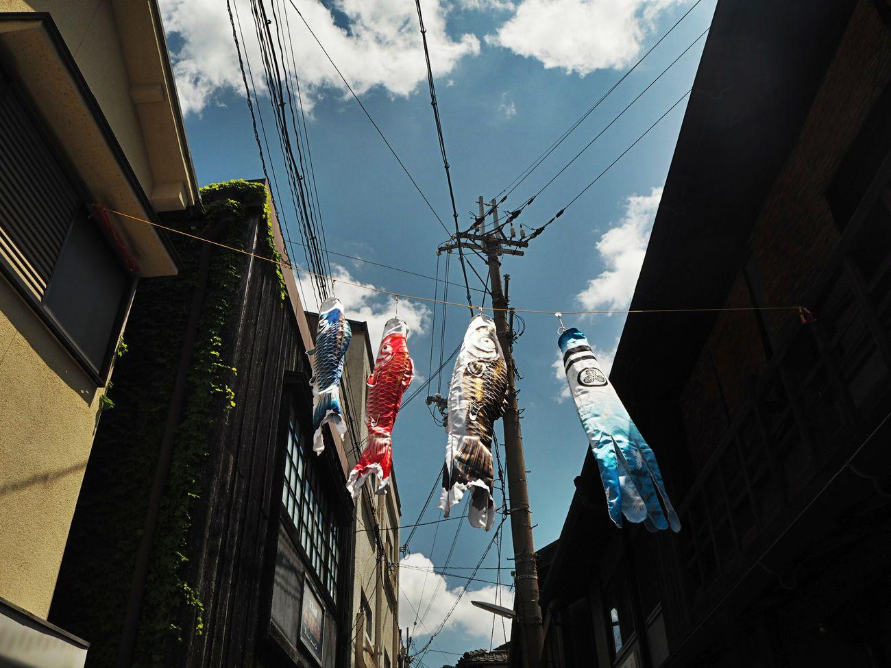 鯉のぼり。明日はこどもの日。 Sky Architecture Low Angle View Streetphotography On The Road Onsen Travel Taking Photos Beautiful Japan No People 鯉のぼり