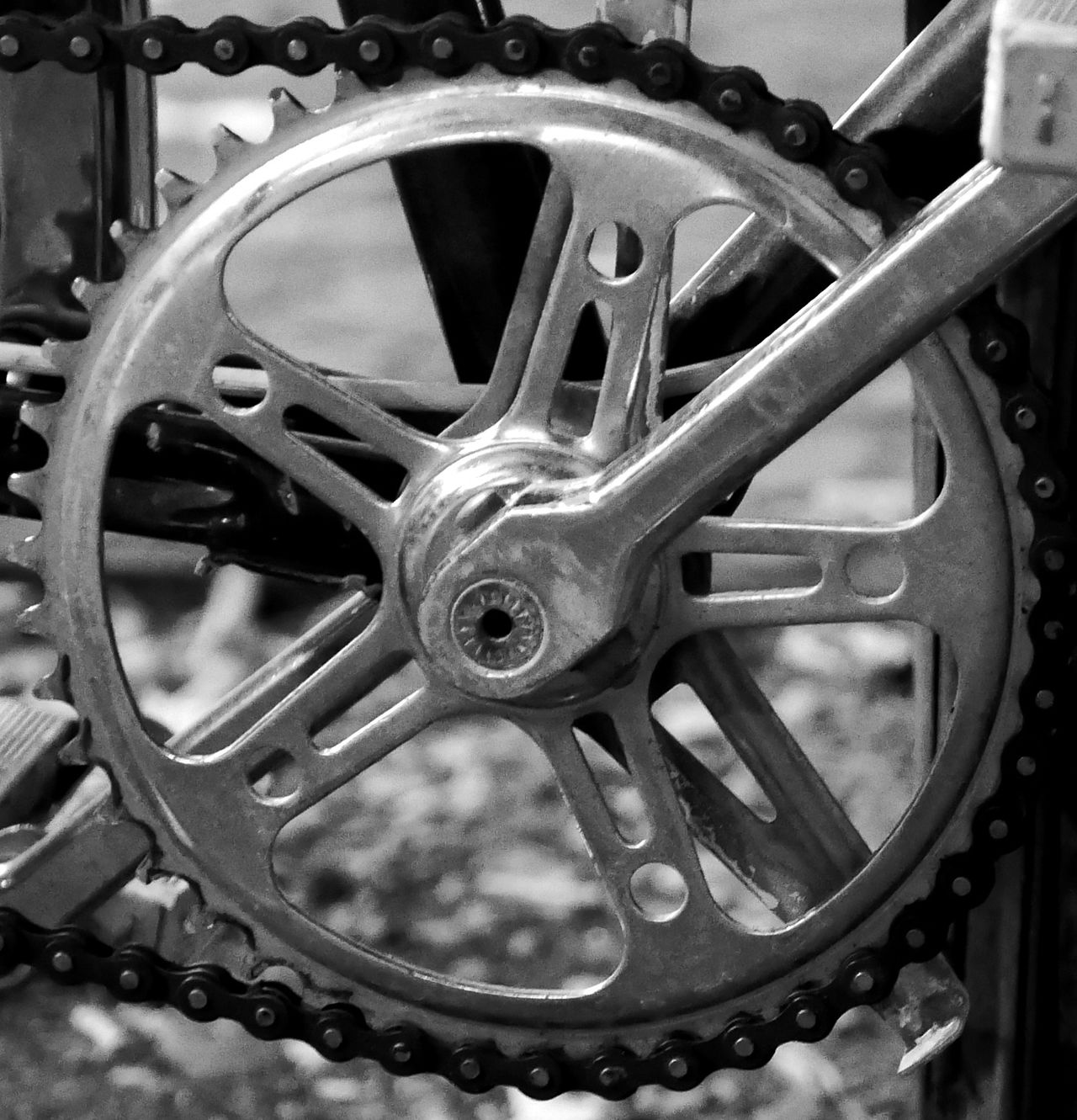 Gear Wheel Chain Bike Close Up Black And White Bike Chain