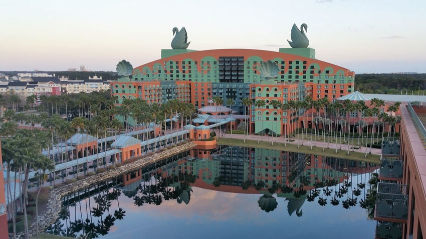 Disney World Swan & Dolphin Hotel Disney World Animal Themes Architecture Bird Building Exterior Built Structure City Day No People Outdoors Sky Sunset Tree Water